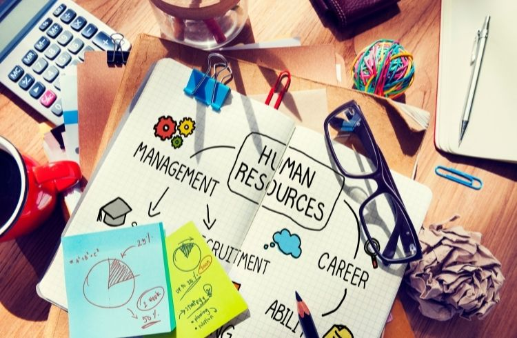 Human Resources | Sora